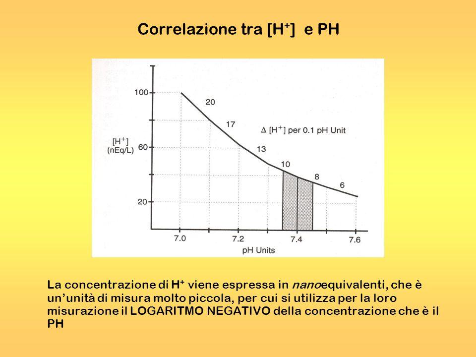 Correlazione tra [H+] e PH